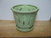 "LOTUS69  Lotus Pot mint round 7"" x 6.5"" high"