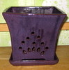 P-LOTUS-25 Mauna Loa Orchid Pot Purple -