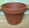 Clay Orchid Pot - 6""